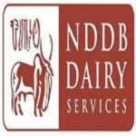 NDDB Jobs 2021